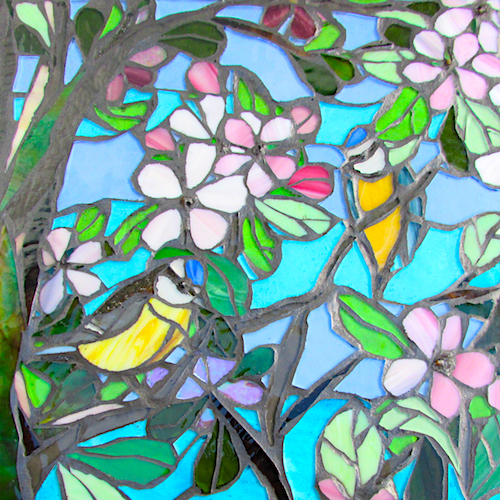blue tits in the apple blossom coaster